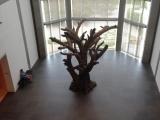 Ai_Weiwei6